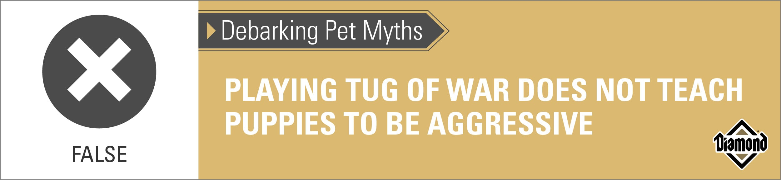 False: Playing Tug of War Properly Does Not Teach Puppies to Be Aggressive   Diamond Pet Foods