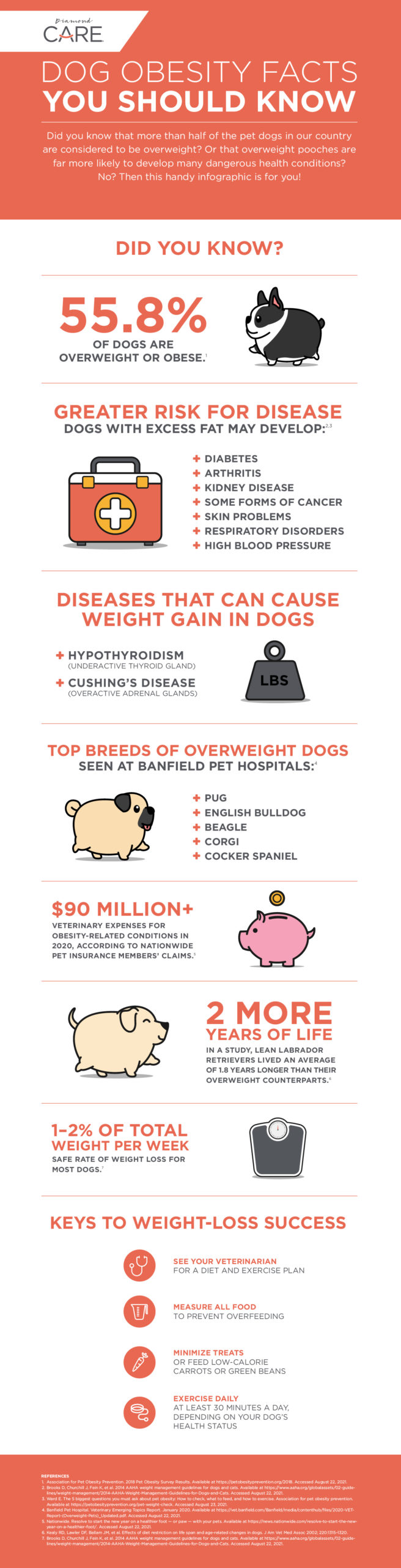 Infographic: Dog Obesity Facts You Should Know | Diamond Pet Foods
