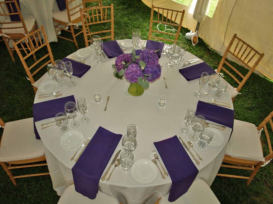 table chair rentals 2 wide recliner uk buena vista wedding diamond state party