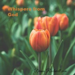 Whispers from God 6