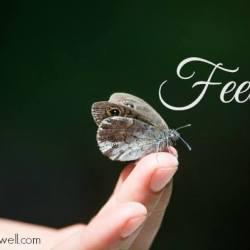 Feelings a fact of life