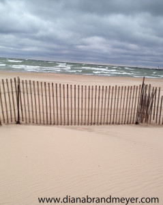 Beach with Sand fence
