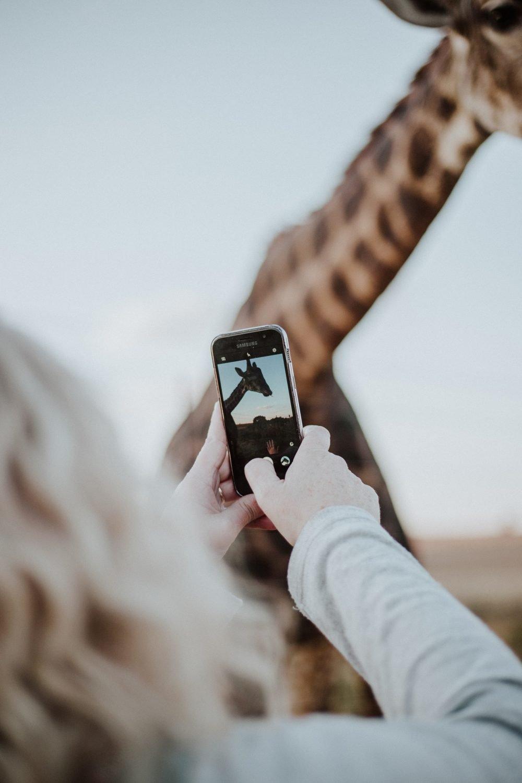 Best Apps for Creative Instagram Stories