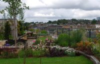 Diana Milner Garden Design   Roof Garden Camden