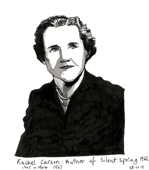 Drawing of Rachel Carson