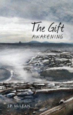 Awakening cover for DStevan256x400