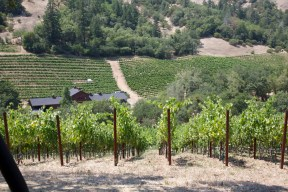 View of the winery at Jericho Canyon