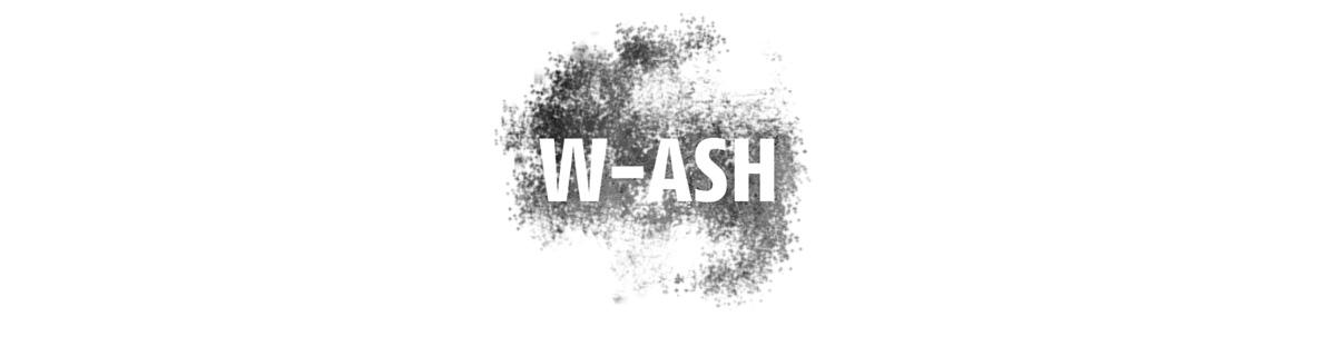 logo WASH