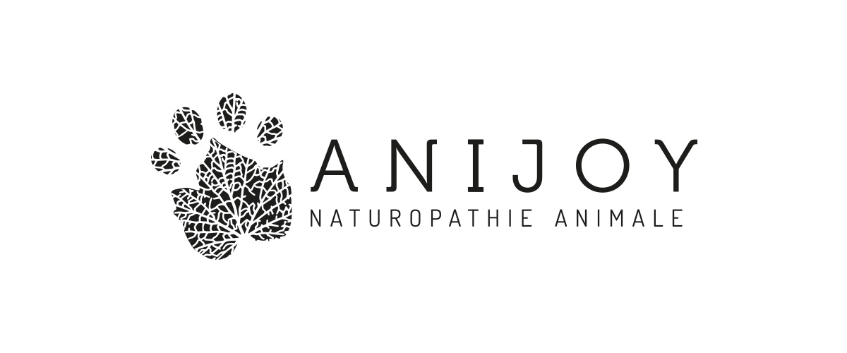 logo ANIJOY noir