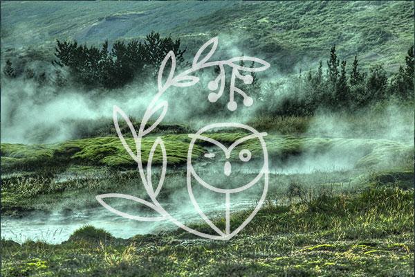 projet Les Principes d'Archimède, logo