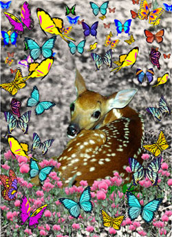 Bambi in Butterflies