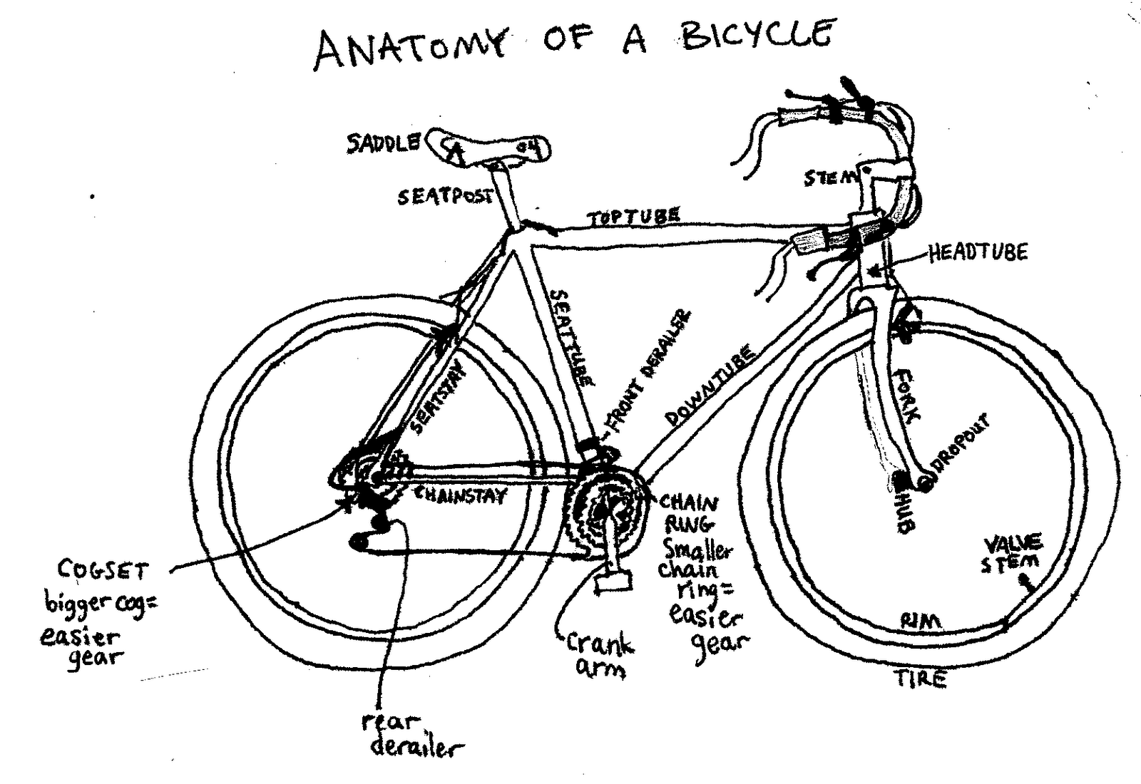 D I Y Bike Repair Clinic