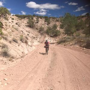 (Breast) Cancer: An Insider's Account: image of a woman biking in the desert.