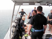 The divers about to dive