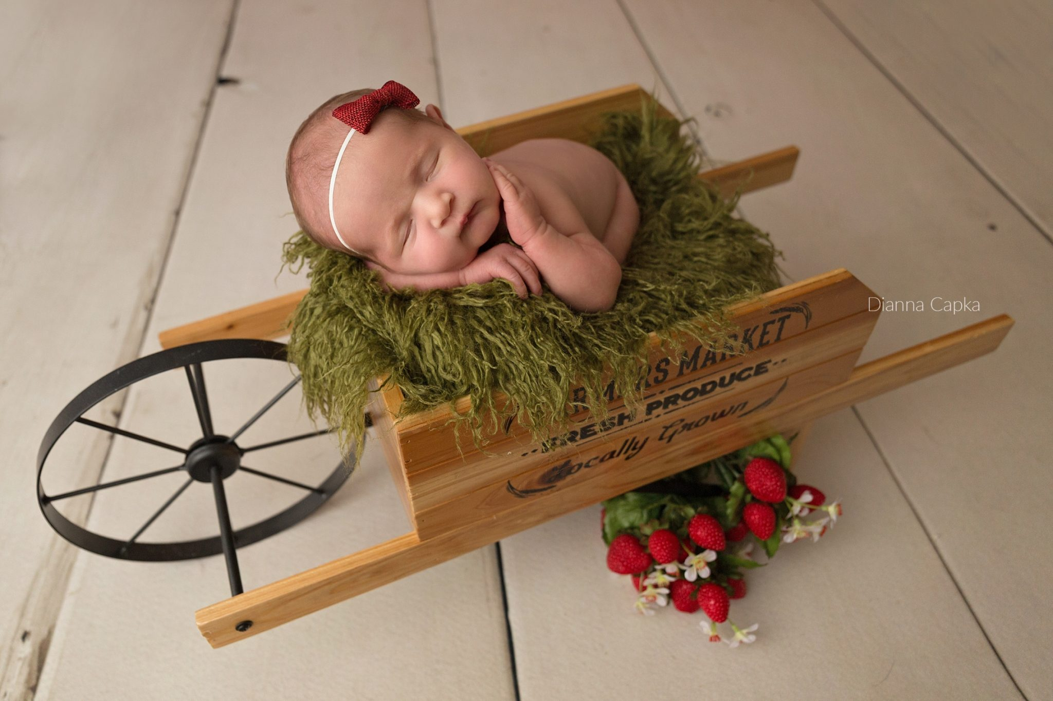 newborn girl in wagon with strawberries lancaster baby photographer