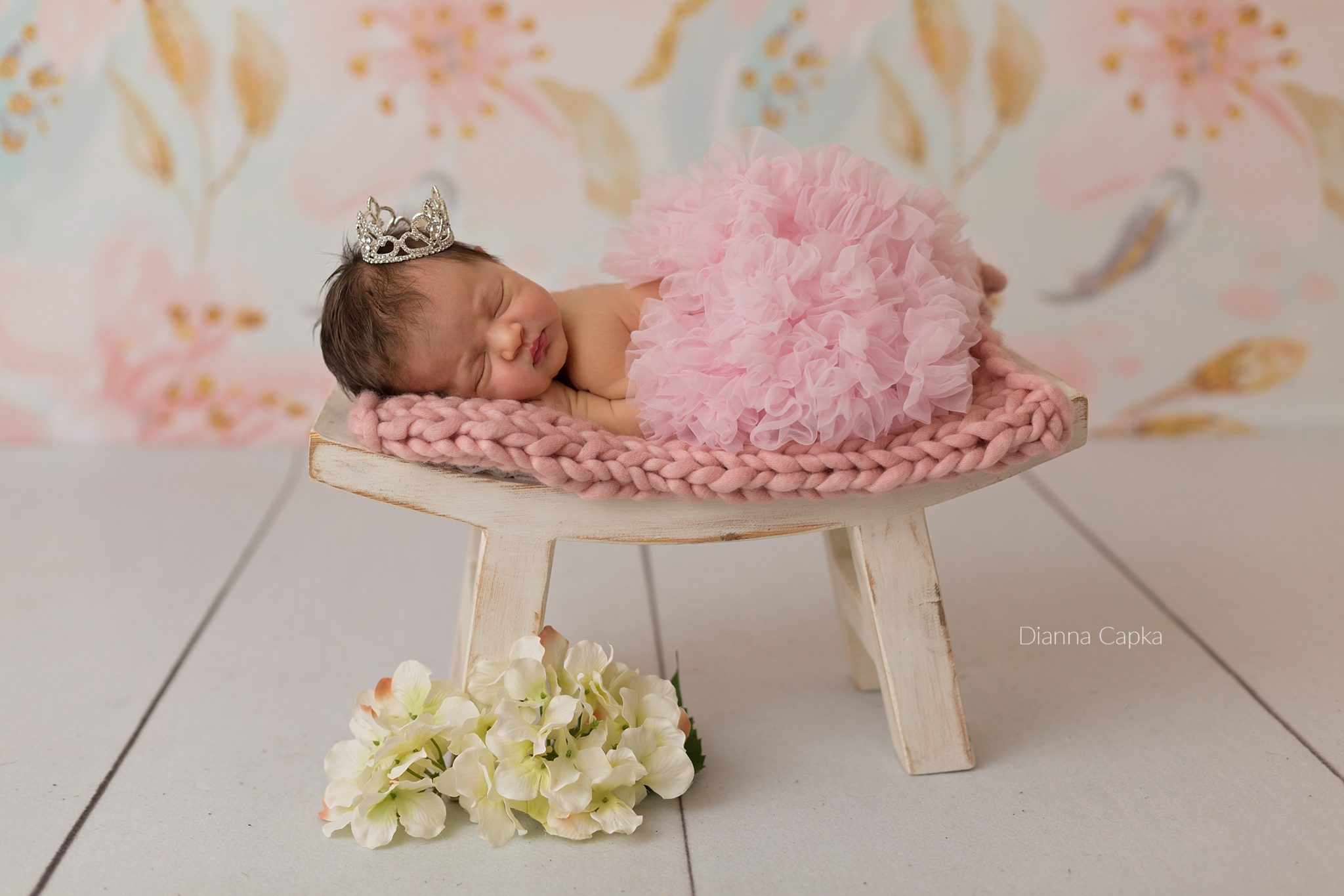 Lancaster newborn photographer ballernina baby