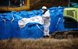 "New Study Finds Fukushima's Radiation Will Poison Food ""for Decades,"""