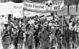 In pictures: 40 years of German anti-nuclear movement