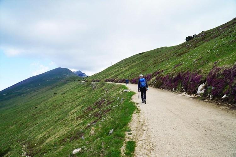 sentiero delle Creste di Naole