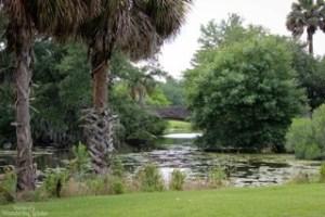 A bridge over the lagoon at City Park