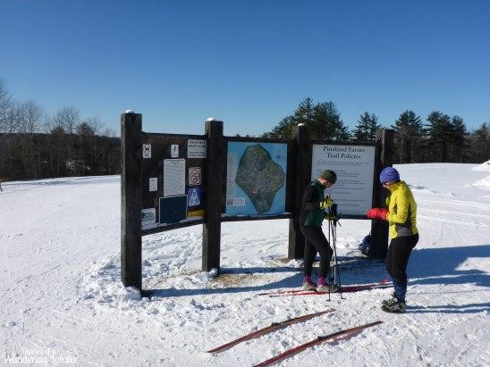 Pineland Farms XC Ski