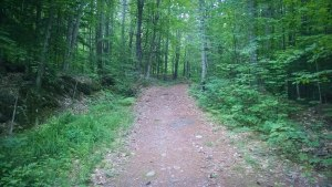 firewarden trail pleasant mountain