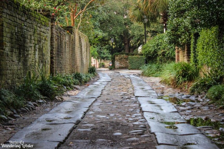 Longitudinal Lane Charleston, South Carolina Travel Photos of 2015