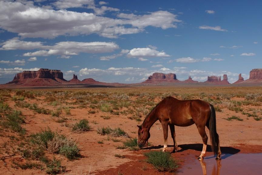 [img] hotels in arizona