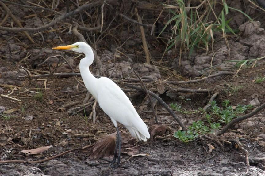 [img] Kakadu National Park