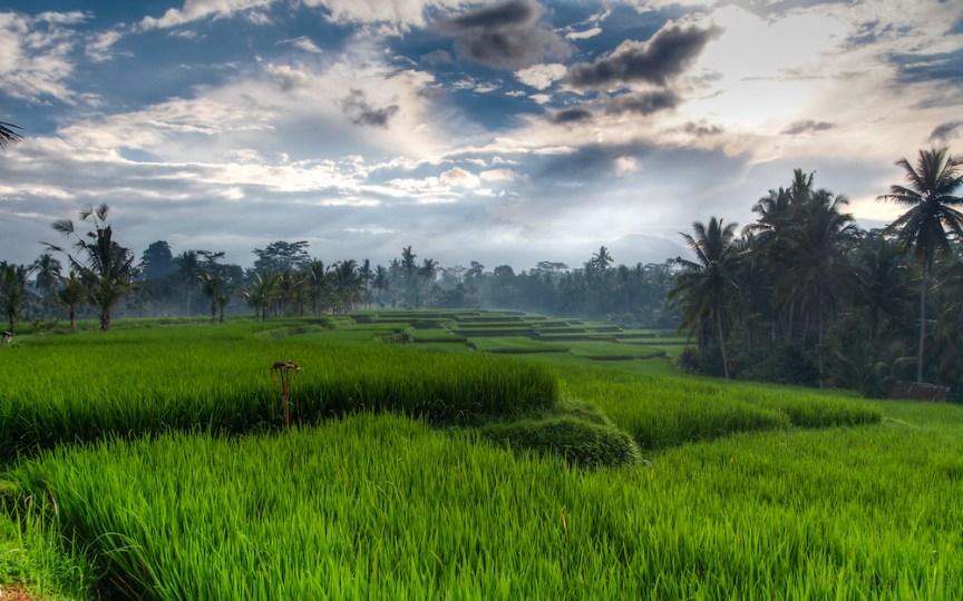 [img] Bali 2017 travel plans