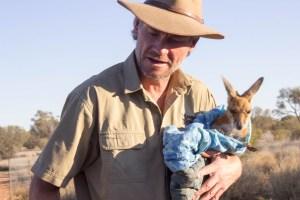[img] Kangaroo Sanctuary things to do in Alice Springs