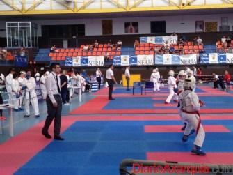 foto-mas-de-200-deportistas-se-dan-cita-en-la-ultima-jornada-del-circuito-provincial-de-karate-en-nerja-(7)_o