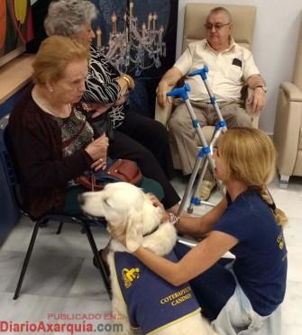 Terapia asistida con animales v