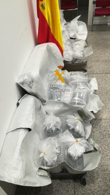 La Guardia Civil interviene 20 kg de angulas vivas en el Aeropuerto de Málaga