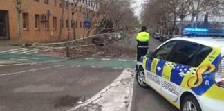 Unas 150 incidencias por el viento y la lluvia en Sevilla, Cádiz y Huelva.