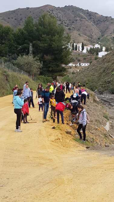 Plantación de árboles autóctonos en El Borge