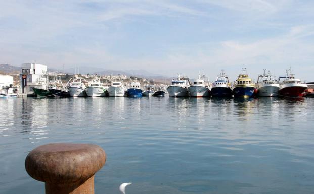 IU presentará una Proposición No de Ley para que se ponga fin al monopolio de Repsol en el puerto de Caleta de Vélez