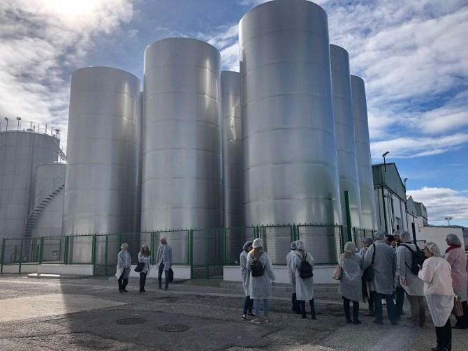 La Diputación participa en un proyecto europeo para mejorar la producción y la calidad del aceite de oliva