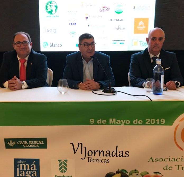 La cita inaugural corrió a cargo del alcalde de Vélez-Málaga, Antonio Moreno Ferrer, el presidente de Mancomunidad Axarquía, Gregorio Campos, y presidente de la Asociación Española de Tropicales Javier Braun.