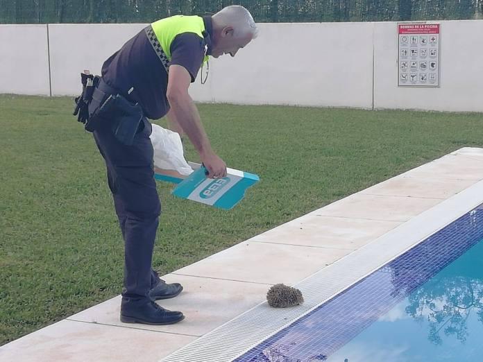 Foto: Policía Local Vélez-Málaga.