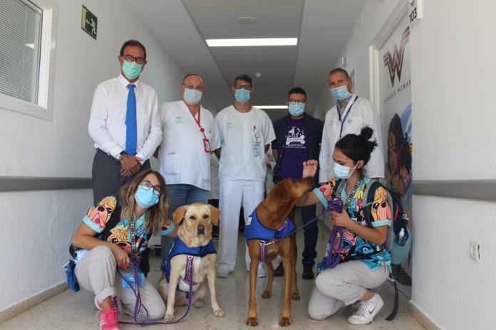 Terapia con Perros para los pequeños ingresados en el Hospital de la Axarquía