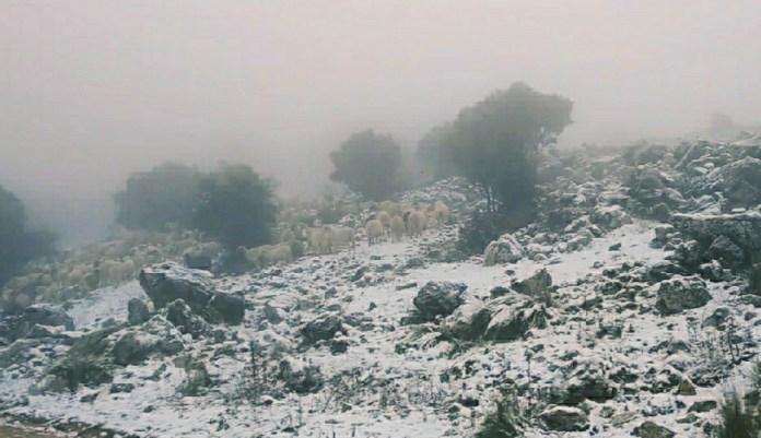 Filomena deja lluvia y nieve en la Axarquía
