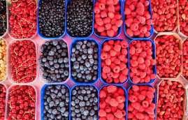 blockchain ibm frutas