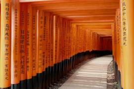 criptomercados-explorador-de-simbolos-kyoto-puertas-diariobitcoin