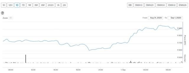 Evolución precio de Bitcoin este 1 de septiembre. Imagen de CriptoMercados DiarioBitcoin