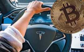 tesla bitcoin marketcap