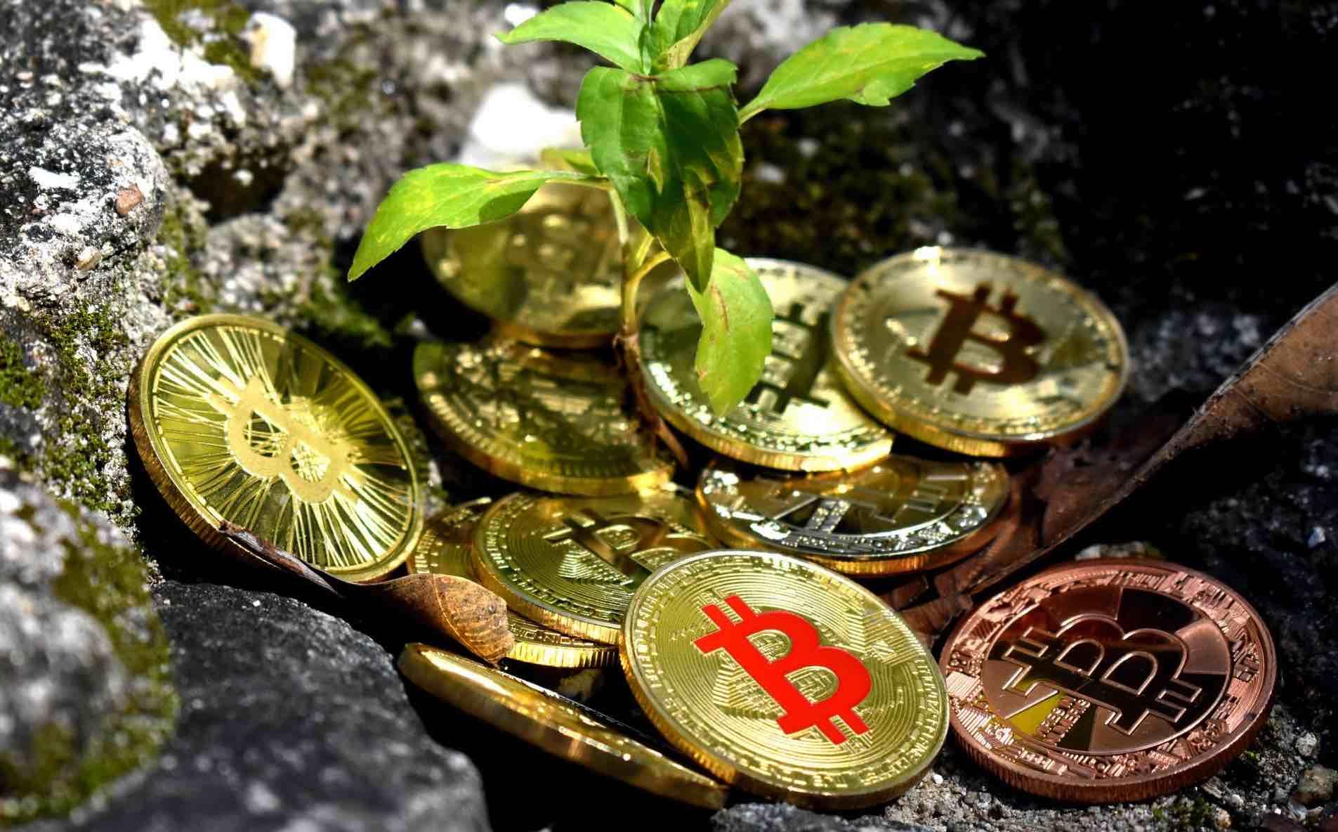 bitcoins empresas
