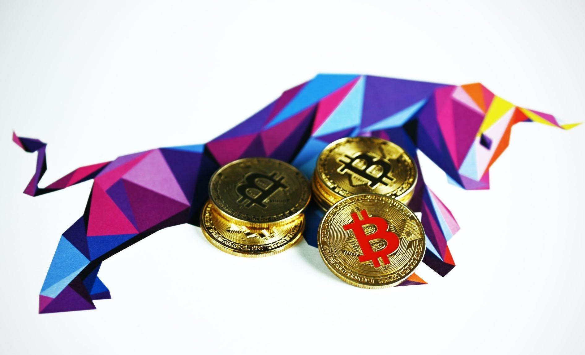 bitcoin up toro
