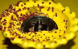 bitcoin hundida