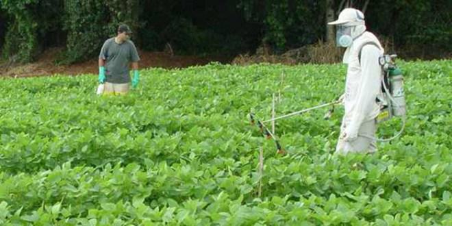 Procurador Morales expresa preocupación  por uso de agroquímicos en el país